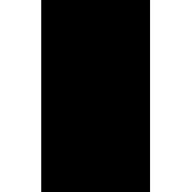 Paffoni Belinda brusekolonne retro med håndbruser - Krom